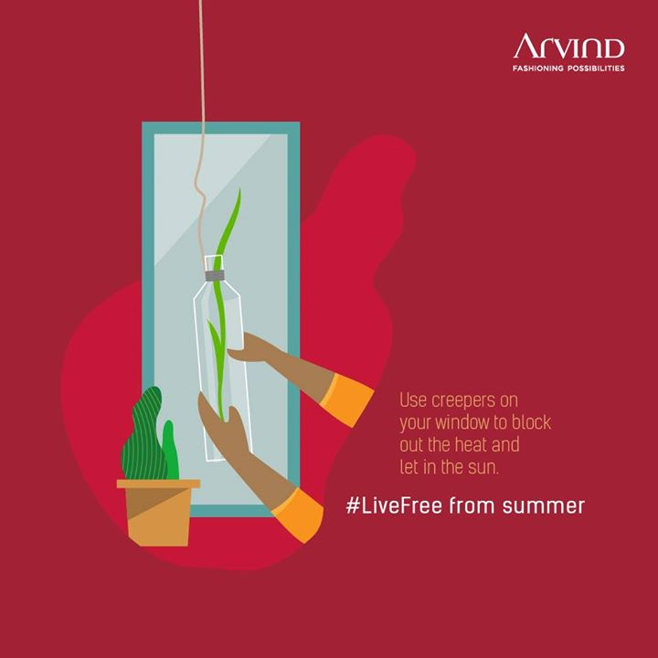 When the dog days of summer start getting to you, try this DIY hack. Creepers near the window allow the light to come in while blocking out the heat. #LiveFree from summer this season.   #ArvindFashioningPossibilities #Summer
