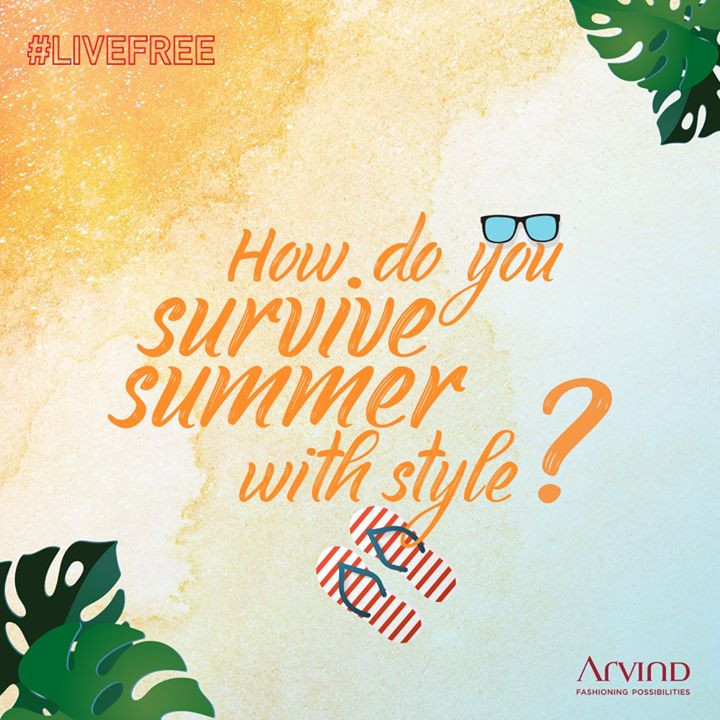 The Arvind Store,  ContestAlert, LiveFree